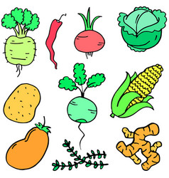 collection stock of vegetable set cartoon vector image vector image