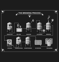 Beer brewing process beer production infographic vector