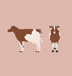 Cow isolated on light background bundle of vector