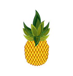 pineapple fruit icon vector image