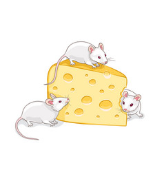 Three white mice with a piece cheese vector