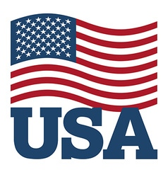 Flag USA Developing America flag on white vector image vector image