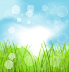 Spring Bokeh Background with Grass vector image vector image
