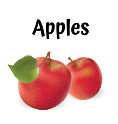 Apples apples red vector