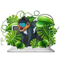 Baboon on computer screen vector