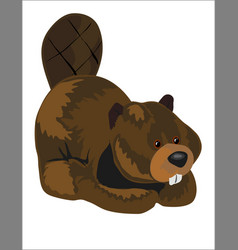 Beaver stuffed toy vector