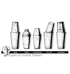 Cocktail shakers types vector