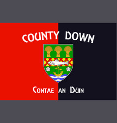 Flag county down in ulster ireland vector