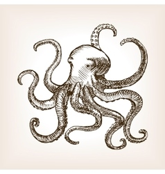 Octopus sea animal sketch vector image