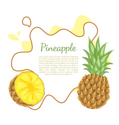 Pineapple tropical plant edible fruit poster vector