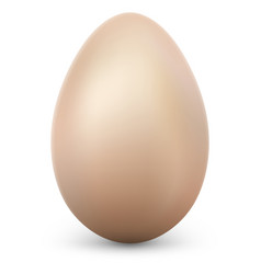 single egg isolated on white background with vector image