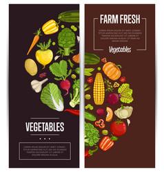 fresh vegetable farming flyers set vector image vector image