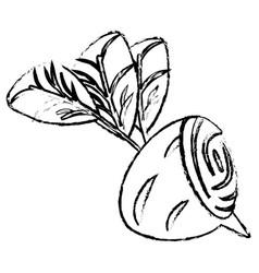 beet half food diet healthy sketch vector image
