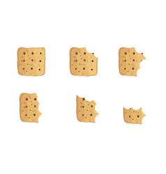 Bitten chip cookie set vector