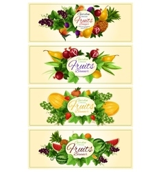 Fruit and berry banner set for food design vector image