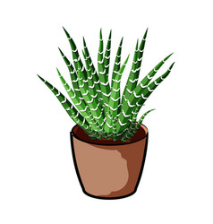 Plant in a clay pot element of home decor the vector