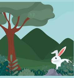 Rabbit in the forest vector