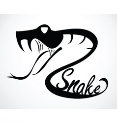 snake C vector image