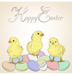 chickens and eggs vector image vector image
