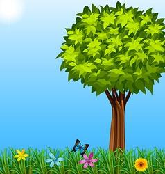 A tree at the garden vector