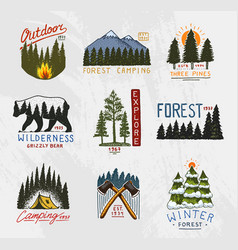 Camp logo mountains coniferous forest and wooden vector