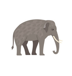 Cartoon grey elephant vector