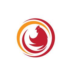 chicken icon design vector image