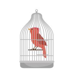 cute bird in cage mascot vector image