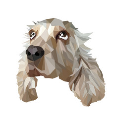 dog in low poly style vector image