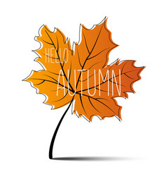 hello autumn autumn leaf autumn banner vector image