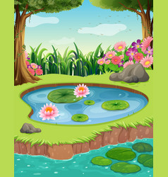 Little pond by the river in the forest vector