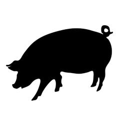 Pig silhouette vector image