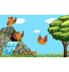 Three owls flying over waterfall vector