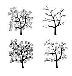 trees seasons collection vector image