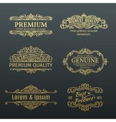 Vintage Golden Banners Labels Frames vector