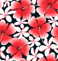 Red tropical hibiscus flower with frangipani vector image vector image