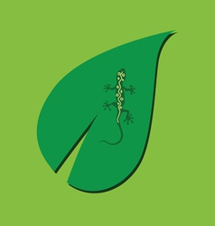 lizard on the leaf color vector image vector image