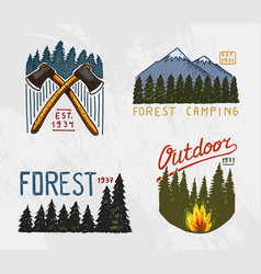 mountains and wooden logo coniferous forest vector image vector image