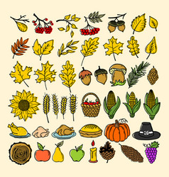 a set of autumn elements of nature handmade vector image