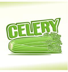 celery still life vector image