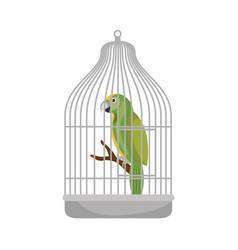 Cute bird parrot in cage mascot vector
