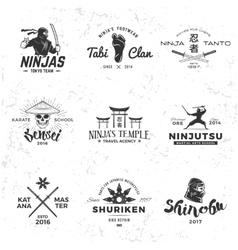 set japan ninja logo sensei skull insignia vector image