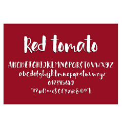 red tomato handdrawn ink brush font vector image