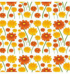 a daisy flower seamless pattern vector image