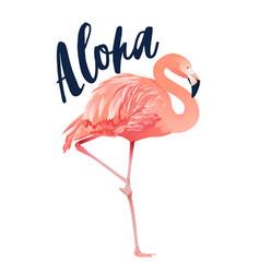 aloha flamingo style isolated on vector image