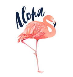 Aloha flamingo style isolated vector
