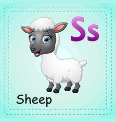 animals alphabet s is for sheep vector image