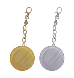 Metal round key chain on chain and carbine gold a vector