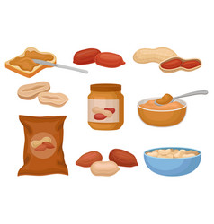 Peanuts and peanut butter set nutritious vector