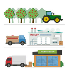 stages of production and processing of juice vector image